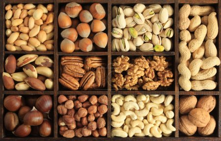 Photo for Varieties of nuts: peanuts, hazelnuts, chestnuts, walnuts, cashews, pistachio and pecans. Food and cuisine. - Royalty Free Image