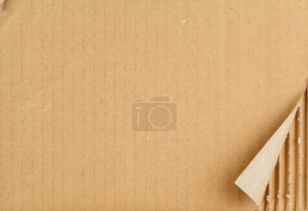 Photo for Ripped grungy cardboard background - Royalty Free Image