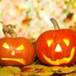 Two Helloween pumpkins lying outdoors on autumn le...