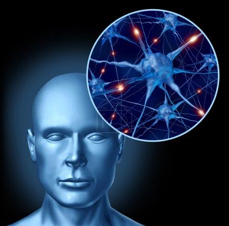 Photo pour Symbole médical de l'intelligence humaine cerveau représenté par sa fin vers le haut des neurones actifs et l'activité des cellules orgue associés à neurotransmetteurs montrant intelligence wi - image libre de droit