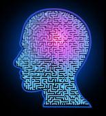 Lidská inteligence hádanka