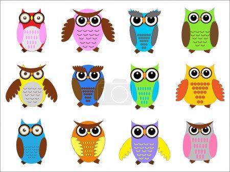 Illustration for Set color owls. Vector illustration - Royalty Free Image