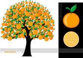 Illustration of a cartoon orange tree isolated on white background