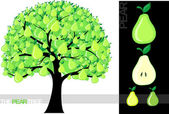 Illustration of a cartoon pear tree isolated on white background