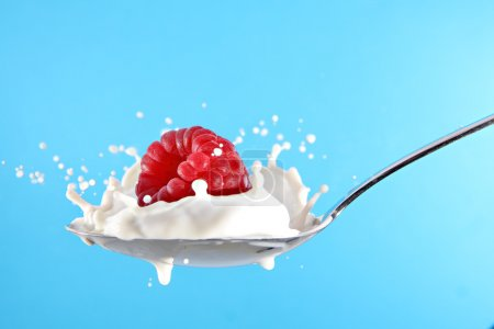 Raspberry splashing in milk or yogurt