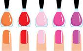 Set of 5 nail polish