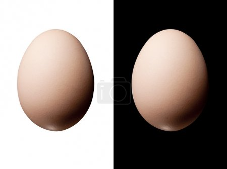 Photo for Eggs isolated on both white and black - Royalty Free Image