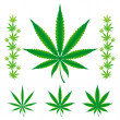 Vector illustration of cannabis/marijuana leafs. S...