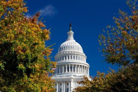 Photo pour Capitol Building Framed Autumn Foliage Washington DC, filtre polarisé - image libre de droit