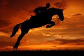 Jezdec na koni, skákání