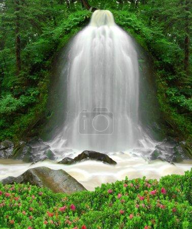 Photo pour Belle cascade dans la forêt - image libre de droit
