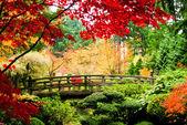 """Постер, картина, фотообои """"Мост в саду"""""""
